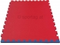 Sportag® Fitness and Martial Arts Mat 20 mm (red-blue)